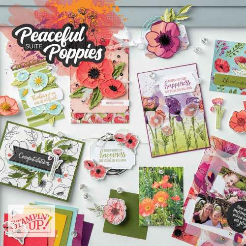 Stampin' Up! Peaceful Poppies Suite - for inspiration, kits, and ordering information visit juststampin.com - Jeanie Stark StampinUp