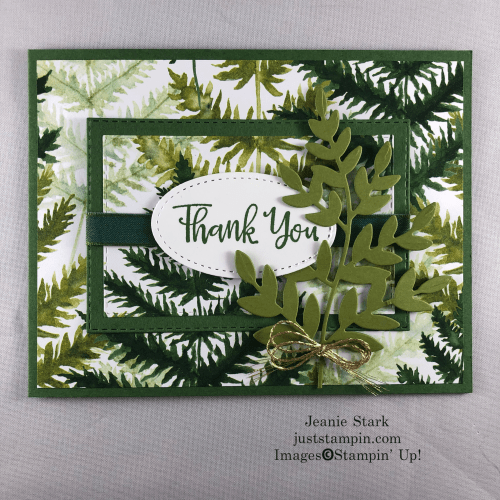 Stampin' Up! Spotlighting technique thank you card idea with Forever Greenery and Stitched Rectangle Dies - Jeanie Stark StampinUp