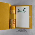 Stampin\' Up! Paper Pumpkin Box of Sunshine stamp set with Daisy punch and Flowers for Every Season lip balm holder - Jeanie Stark StampinUp