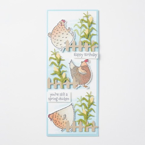 Stampin' Up! Hey Cheick and Hey Birthday Chick slimline card idea - Jeanie Stark StampinUp