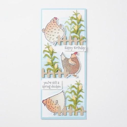Stampin' Up! Hey Cheick and Hey Birthday Chick slimline card idea - Jeanie Stark StampinUp