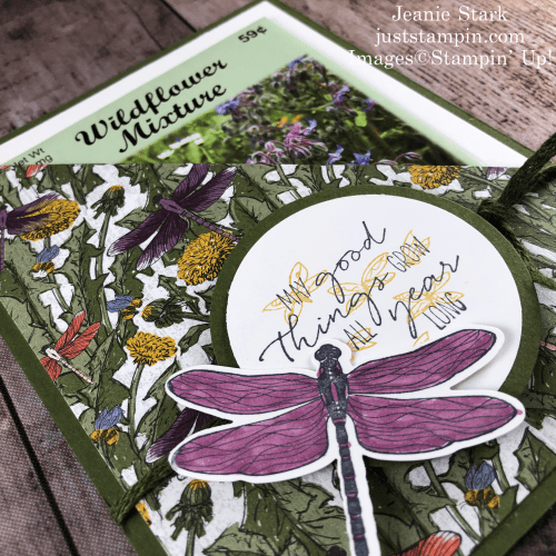 Stampin' Up! Dragonfly Garden seed packet holder with Dandy Garden Designer Series Paper - Jeanie Stark StampinUp