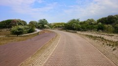 Heading into the dunes, footpath on the left, cycle path in the middle and bridleway on the right