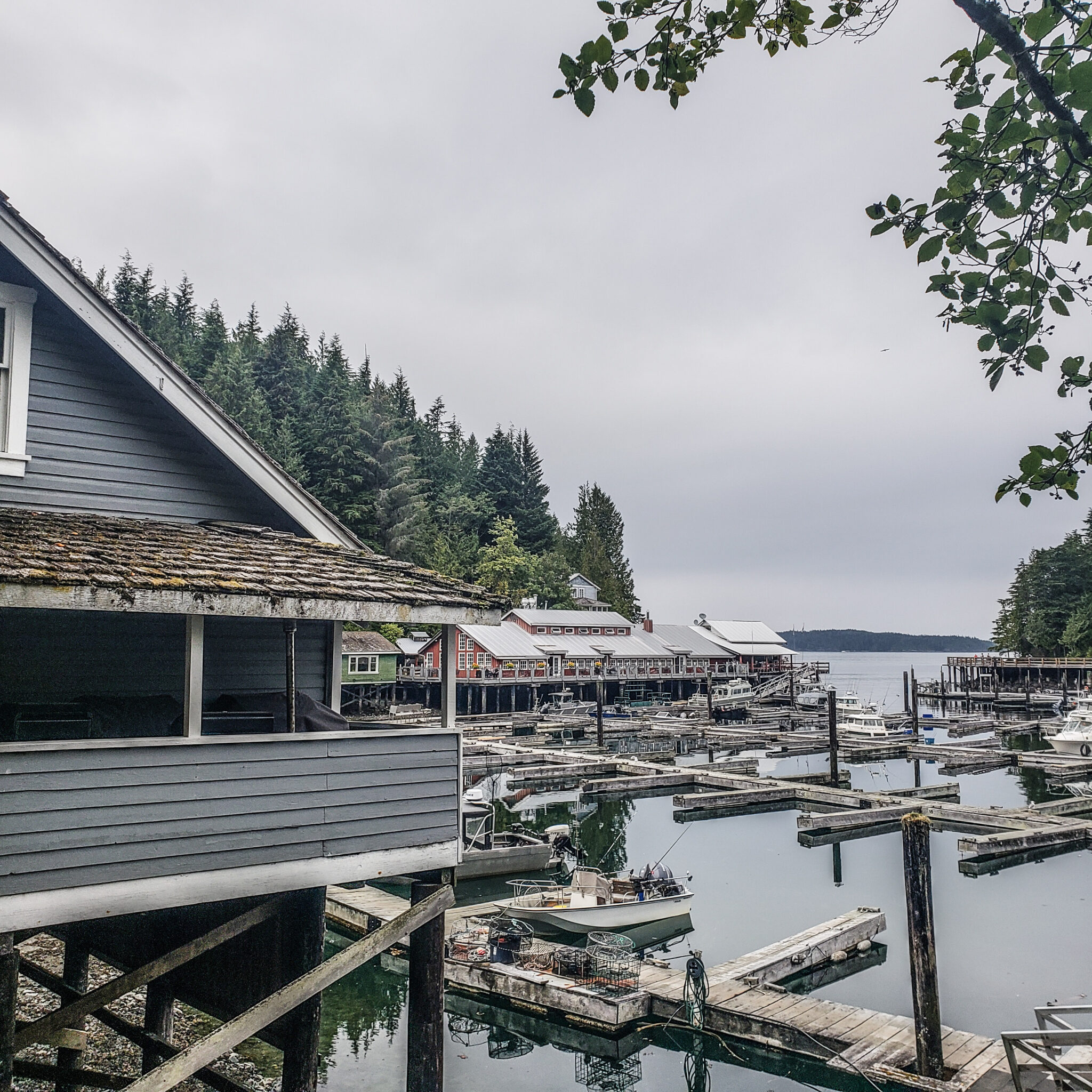 Visit Port Hardy - Vancouver Island North - Explore Canada - Hello British Columbia - Telegraph Cove - View
