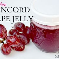Pectin Free Concord Grape Jelly