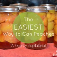 The Easiest Way to Can Peaches: A Step-by-step Tutorial