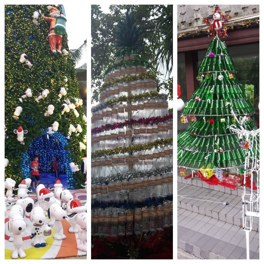 Thailand Christmas trees