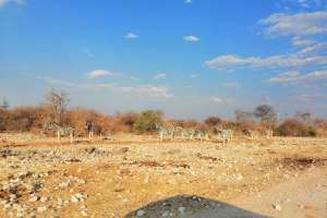Read more about the article Namibia Part 2: R Kelly and a VW Viva