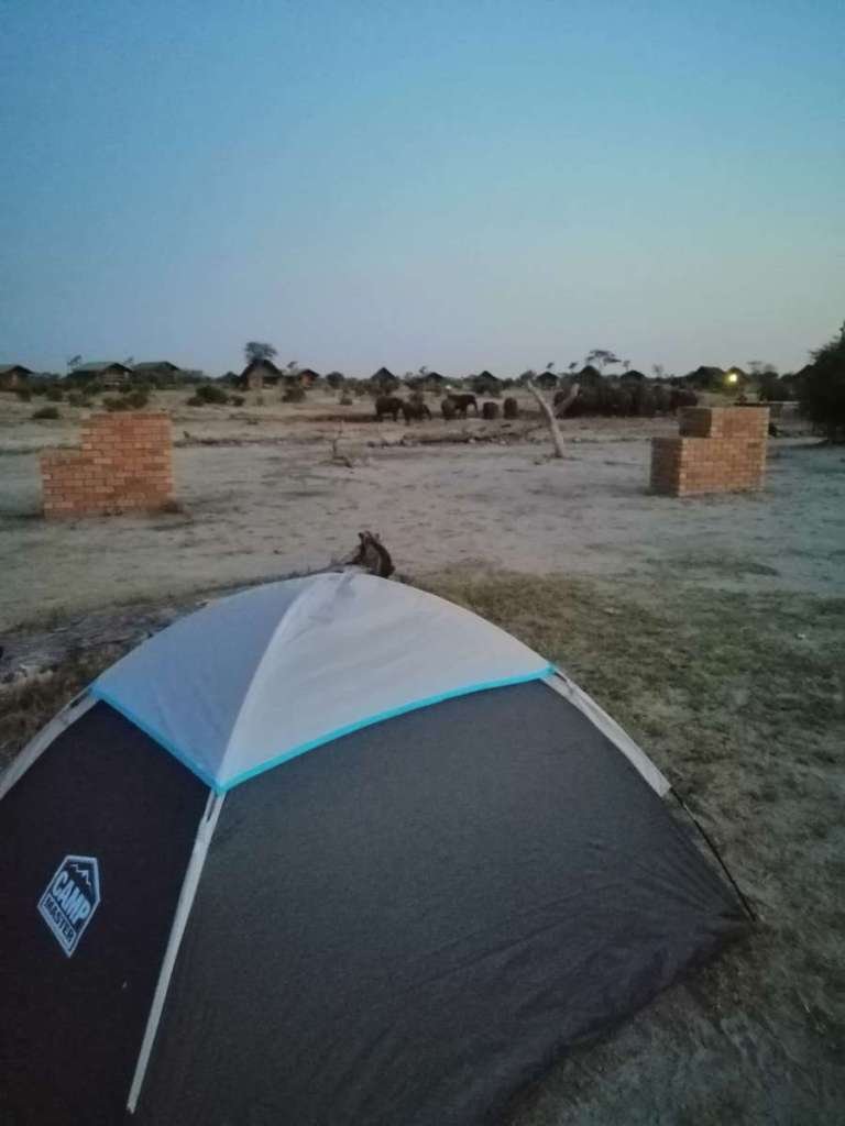 My tent in the foreground and open space to the herd of elephants behind