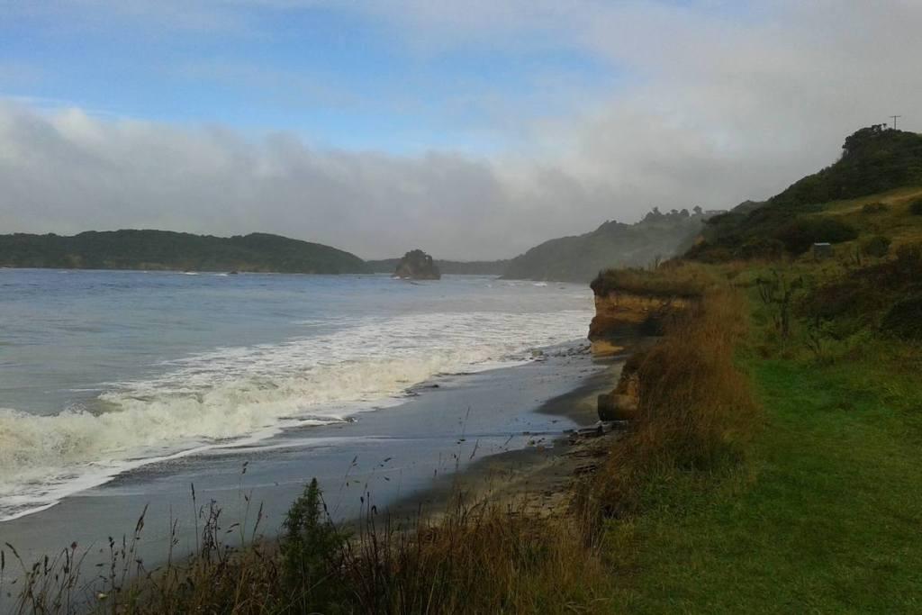 Wild coast of Stewart Island
