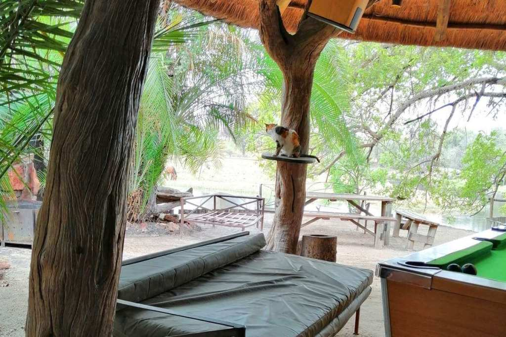 View of The Old Bridge Backpackers in Maun