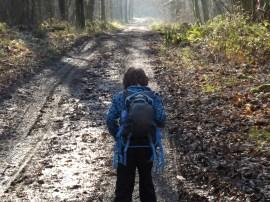 tennyson-trail-032