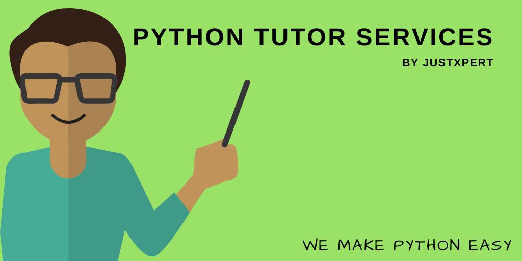 Python Tutor services