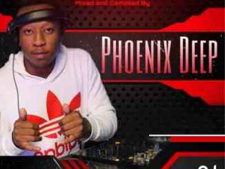Phoenix Deep – The New Age Fundamentals Vol. 15 Mix