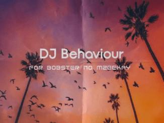 DJ Behaviour - For Bobster no Mzeekay