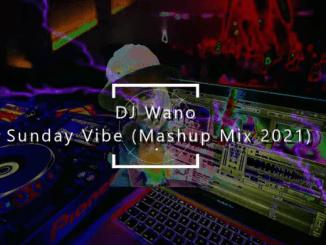 DJ Wano - Sunday Vibe Chill Songs (Mashup Mix 2021)