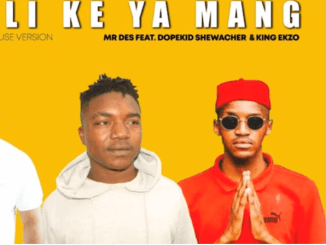 Mr Des - Bili Ke Ya Mang Ft. Dopekid Shewacher & King Ekzo (Afro House 2021)