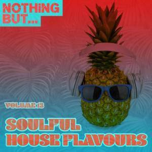 DOWNLOAD ALBUM: VA – NOTHING BUT… SOULFUL HOUSE FLAVOURS, VOL. 13 | ZIP