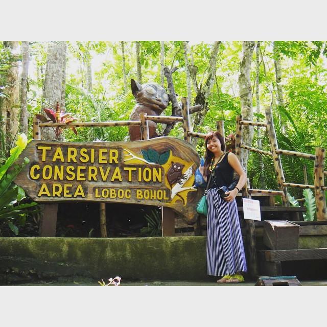 Tarsier Conservatory, Bohol, Philippines. #tarsier #bohol #philippines #asia #jusztravel #travel #travelasia #travelphilippines #explore