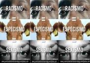 Racismo=especismo=sexismo