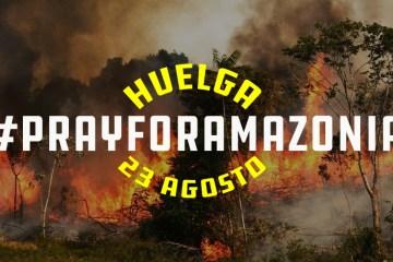 FFF en todo el mundo se solidariza con la catástrofe brasileña