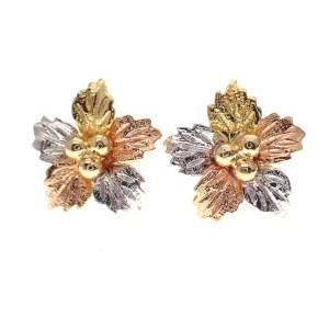 tricolor gouden oorstekers bloem