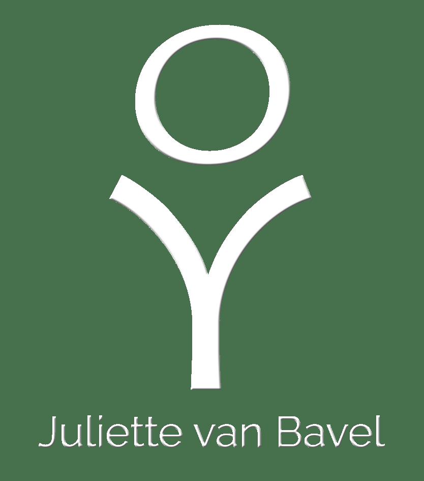 logo juliette van bavel Fine Art