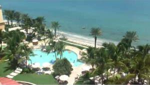 Palm Beach 300