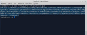 Como usar ssh pegando con cat clave pública