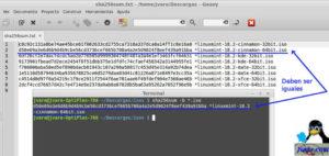 Verificar imagenes iso de Linux Mint Sonya