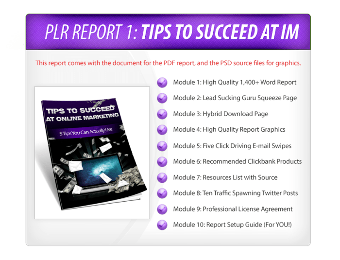 [PLR] Lead Magnets - V1 - Internet Marketing & Make Money Online PLR Reports Review