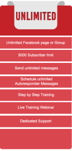 ChatResponse Unlimited Pages Review