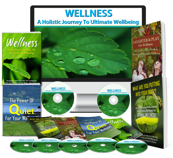 Wellness: A Holistic Journey To Ultimate Wellbeing 270+ Piece PLR Bundle Review