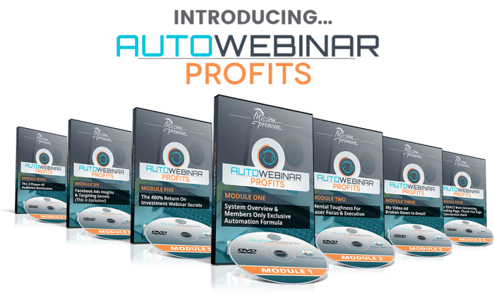 Mario Brown's Auto Webinar Profits Review