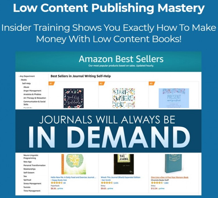 Low Content Mastery: KDP Domination By Kate Anderson Review