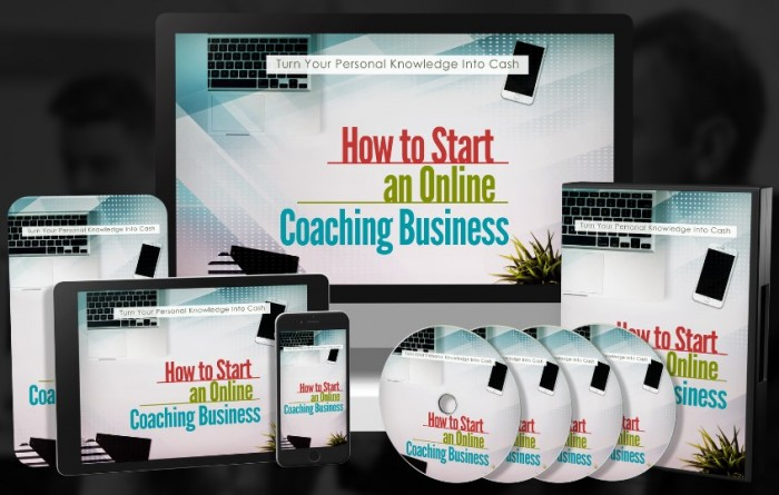 How To Start An Online Coaching Business PLR By Onlinebizgiant Review