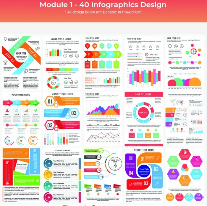 Infographics Kit Bundle By Deni Iskandar Review