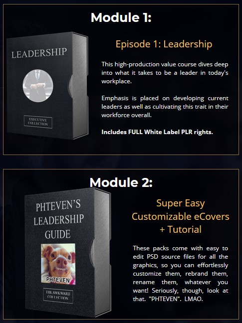 2020 Executive Collection PLR By Steven Alvey from Warlord Entrepreneur Review