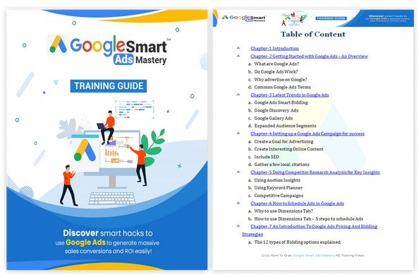 Google Smart Ads Mastery PLR By firelaunchers Review