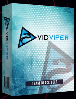 VidViper By Art Flair Review
