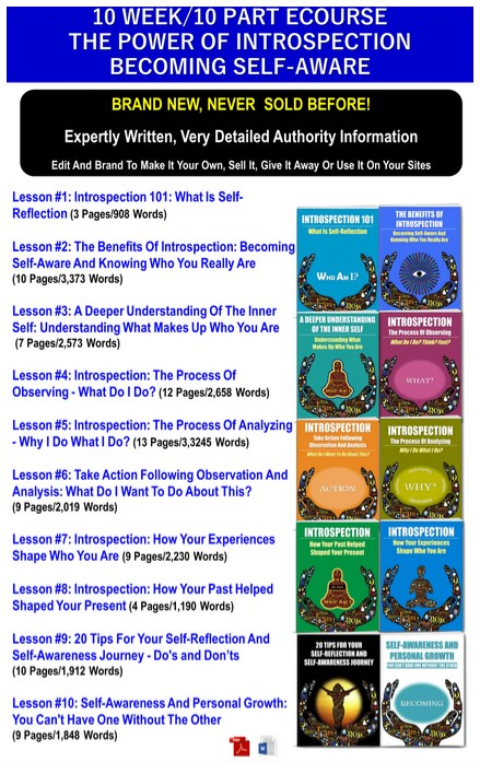 10 Part eCourse: The Power Of Introspection: Becoming Self-Aware PLR Pack By JR Lang Review