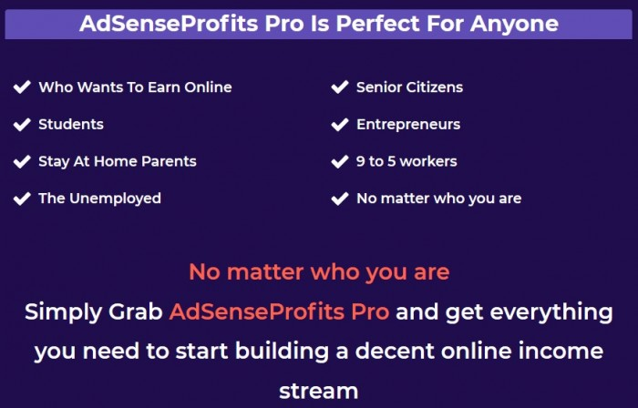 AdSenseProfits Pro By David Williams Review