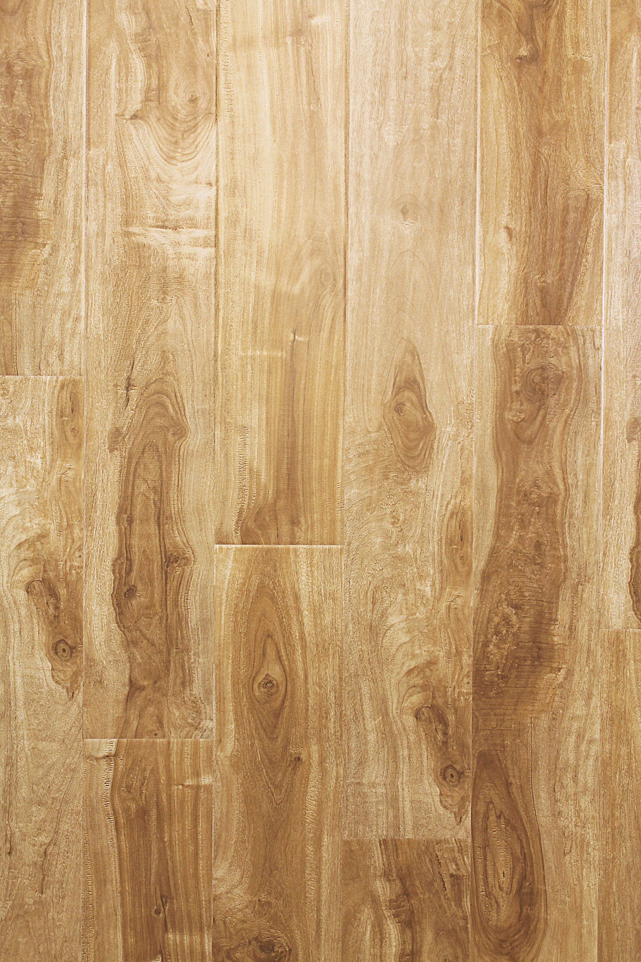 Parkay Forest Sand Dollar Acacia  123 mm  JV Wood Floors