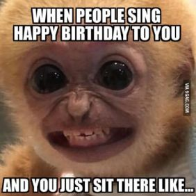 monkey-meme