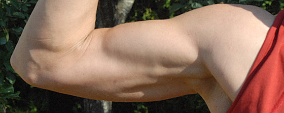 My arms