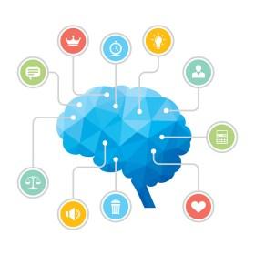 كيف يعمل الدماغ في الشخصيات المختلفة؟ تجربة UCLA