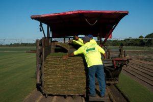 Our Team  JW Turf FarmsJW Turf Farms