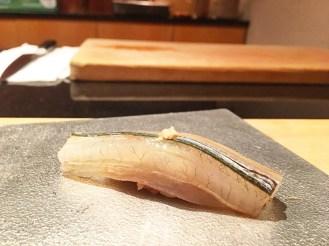 Sayori ( Needlefish)