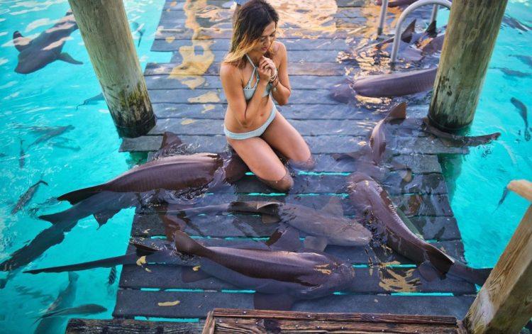 cuppajyo_sfblogger_style_fashion_travelblogger_bahamas_exumas_nursesharks_swimmingwithsharks_sandbars_toripraver_bikinidotcom_showmeyourmumu_starfish_swimwear_9