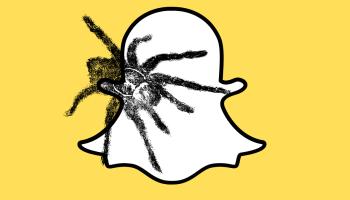 How To Find Original Spider On Face Filter For Snapchat Jypsyvloggin